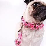 Embellished Pink Gingham Ribbon Dog Collars with Petal Flowers and Pearls - A Pet's World