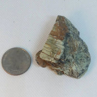 Raw Mt. Shasta Serpentine (New Jade) - Stone for Sale