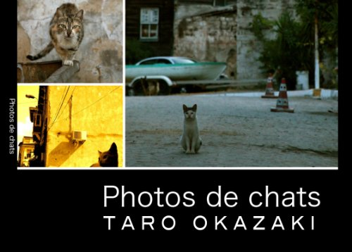 photos de chats Kindle版