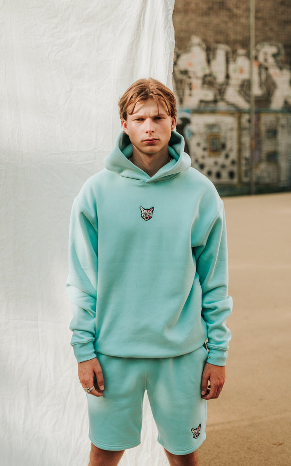 TURQUOISE SPORTS CLUB HOODIE CAT - PARI USA , Wearepari, Paul Ripke, pari swim club, Newport Beach, pari