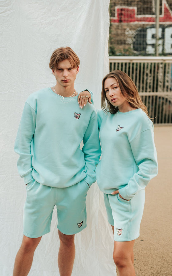 TURQUOISE SPORTS CLUB SWEATSHIRT CAT - PARI USA , Wearepari, Paul Ripke, pari swim club, Newport Beach, pari
