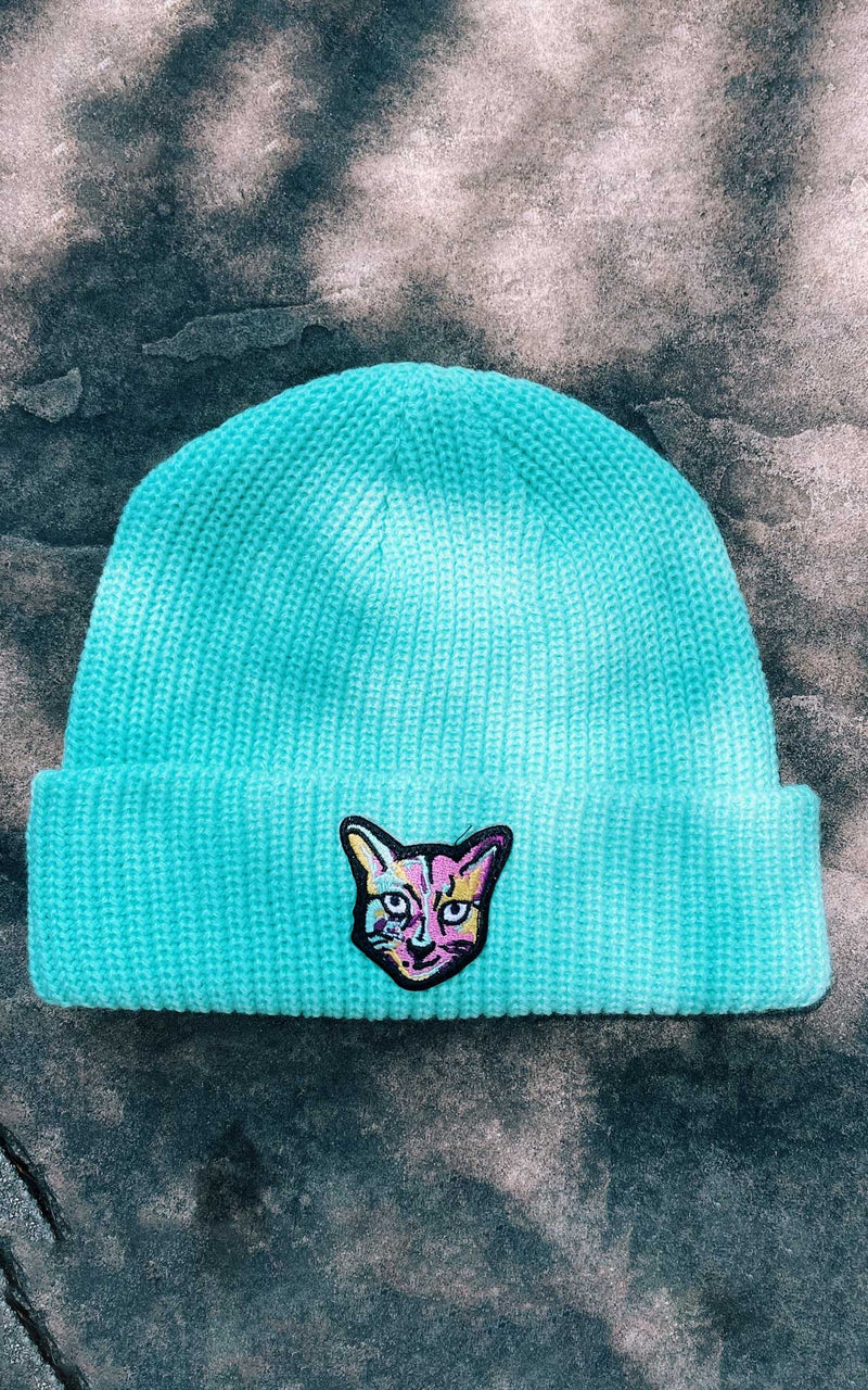 TURQUOISE BEANIE CAT - PARI USA , Wearepari, Paul Ripke, pari swim club, Newport Beach, pari