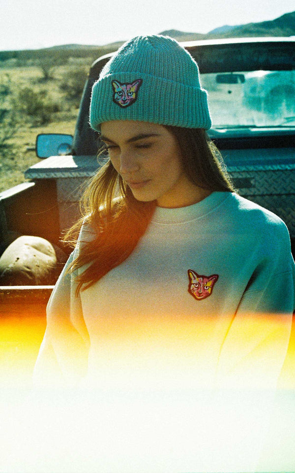 TURQUOISE SWEATSHIRT CAT - PARI USA , Wearepari, Paul Ripke, pari swim club, Newport Beach, pari