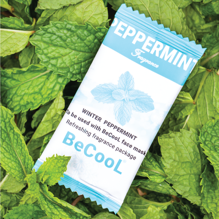 Fragrance Refills Pack of 10 – Winter Peppermint