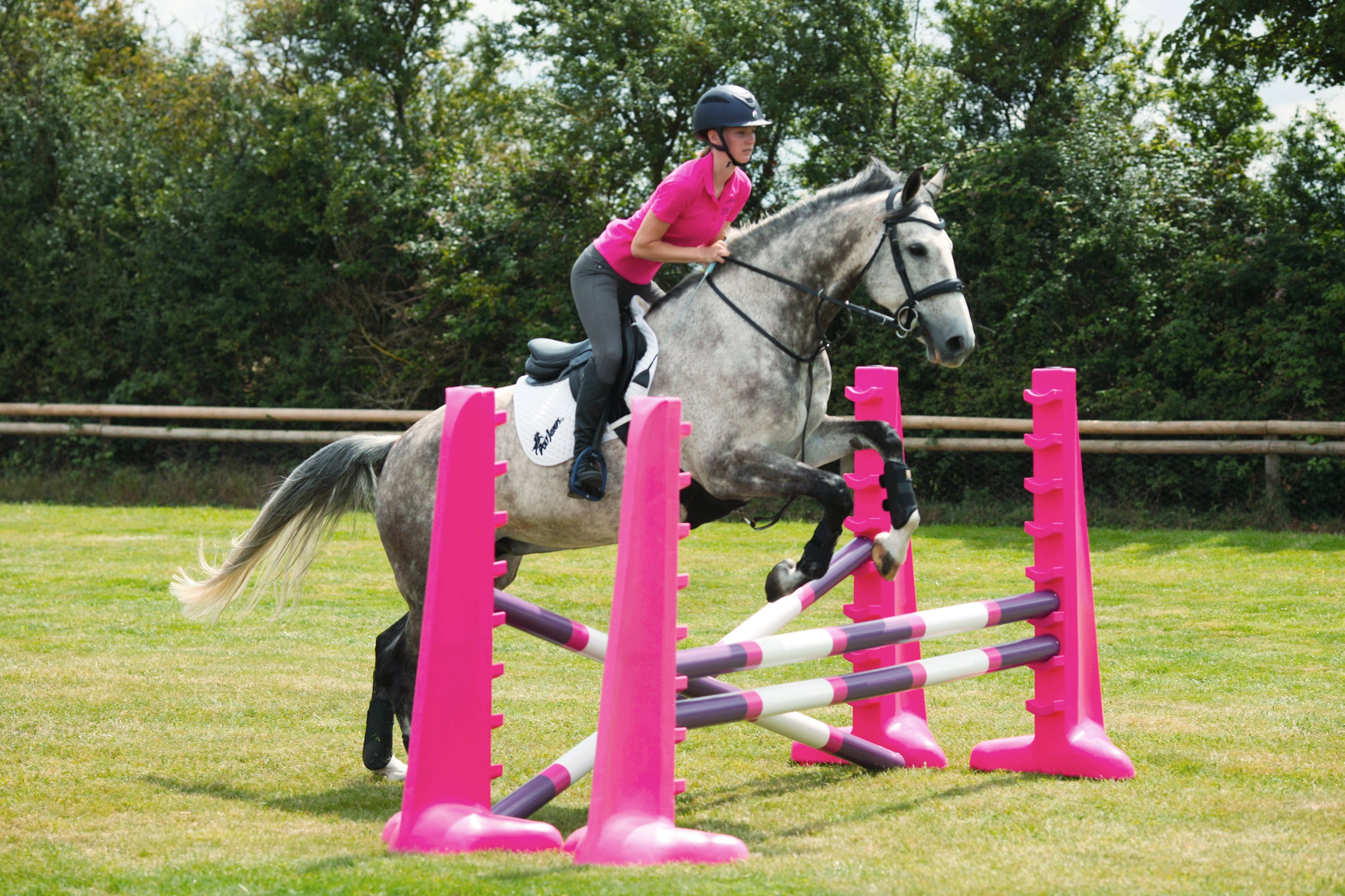 Horse jumping over 2 fences made up of 2 pairs of pink 8 cups with 3 poles.