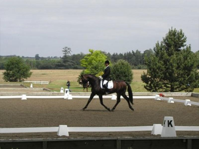 Photograph of Dressage Rider in Dressage Arena. Dressage Towers in foreground and background.