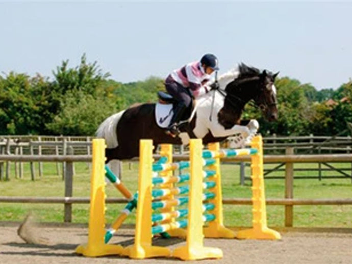 Photograph of horse and rider jumping over 3 fences. 3 Pairs of Yellow 8 Cups with 9 Pro Poles. Poles coloured Green, White & Yellow.