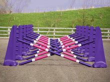 Load image into Gallery viewer, Carol Mailer Grid Set in Purple, comprised of: 14 Purple 8 Cups and 14 9 Band Pro Poles coloured: Purple, White & Pink..