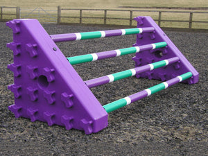 A pair of Purple Combi Blocks with 4 9 Band Pro Poles.