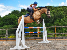 Load image into Gallery viewer, Horse and rider jumping over a pair of White Cross Wings with 2 9 Band Practice Poles.
