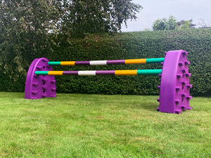 Pair of Purple Hedgehogs with 2 7 Band Pro Poles coloured: Green, Yellow Purple & White.
