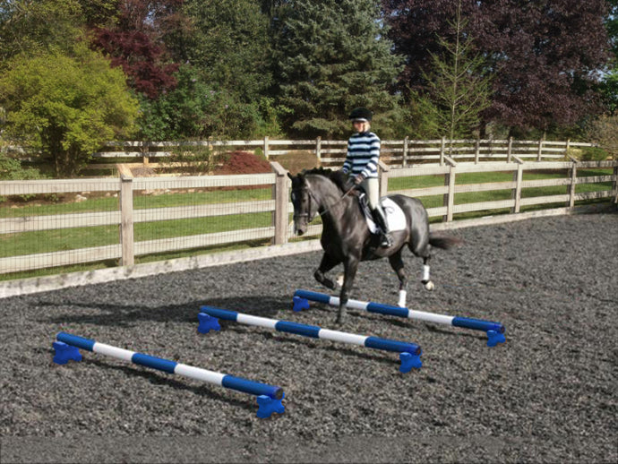 Horse and rider trotting over 3 Blue and White 5 Band Practice Poles with PolePods.