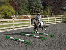 Load image into Gallery viewer, Horse and rider trotting over 3 Green and White 5 Band Practice Poles with PolePods.