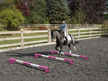 Load image into Gallery viewer, Horse and rider trotting over 3 Pink and White 5 Band Practice Poles with PolePods.