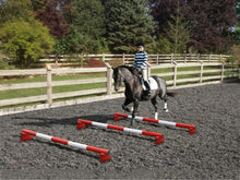 Load image into Gallery viewer, Horse and rider trotting over 3 Red and White 5 Band Practice Poles with PolePods.