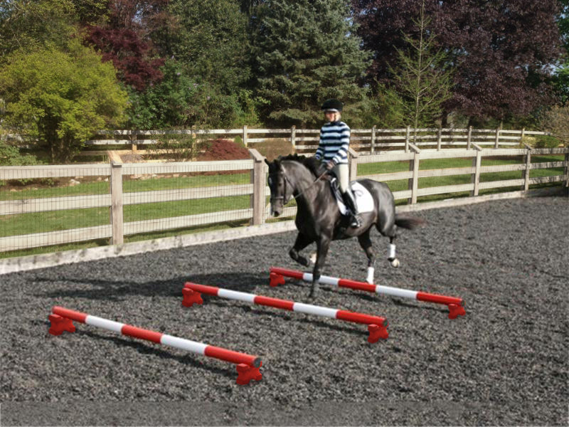 Horse and rider trotting over 3 Red and White 5 Band Practice Poles with PolePods.