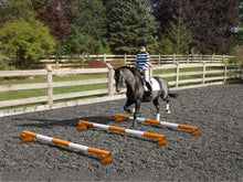 Load image into Gallery viewer, Horse and rider trotting over 3 Orange and White 5 Band Practice Poles with PolePods.
