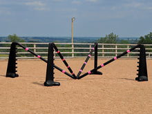 Load image into Gallery viewer, PolyJumps Spider set comprised of 2 pairs of Black 8 Cups and 4 9 Band Pro Poles coloured: Black and Pink.