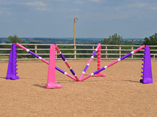 Load image into Gallery viewer, PolyJumps Spider set comprised of 2 pairs of Pink and Purple 8 Cups and 4 9 Band Pro Poles coloured: Pink, White and Purple.