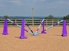 Load image into Gallery viewer, PolyJumps Spider set comprised of 2 pairs of Purple 8 Cups and 4 9 Band Pro Poles coloured Club Style.