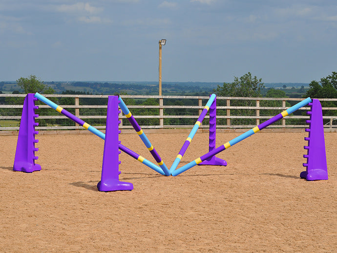 2 pairs of 8 Cup wings in Purple with 4 Club Style 9 Band Pro Poles in arena.