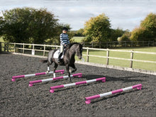 Load image into Gallery viewer, Horse and rider trotting over 4 5 Band Poles Pink and White red PolePods.