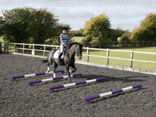 Load image into Gallery viewer, Horse and rider trotting over 4 5 Band Poles Purple and White red PolePods.