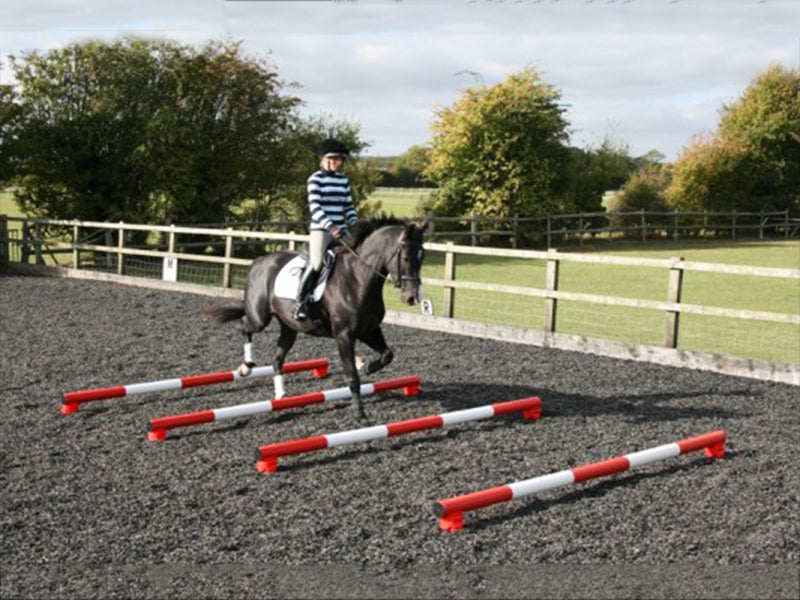 Horse and rider trotting over 4 5 Band Poles Red and White red PolePods.