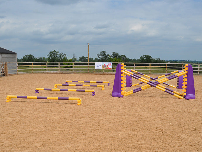 4 rows of Mini Blocks alternating Yellow and Purple with Yellow and Purple 7 Band Pro Poles. Purple and Yellow 8 Cups with matching 7 Band Pro Poles, with Purple Hedgehogs behind with 2 more 7 band Pro Poles.