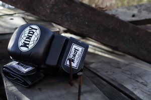 MMA sparring gloves: Old versus New