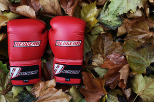 What are the best boxing gloves?