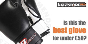 The best boxing glove for under £50?