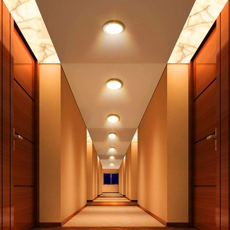 LED Flush Mount Ceiling Light Dimmable