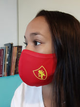 Load image into Gallery viewer, NDPA Red School Spirit Mask - Xpression Masks