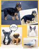 Pet Photo Cushion / Plush Pillow. DIY Customized Gift From Your Pet Toy Doll Photo