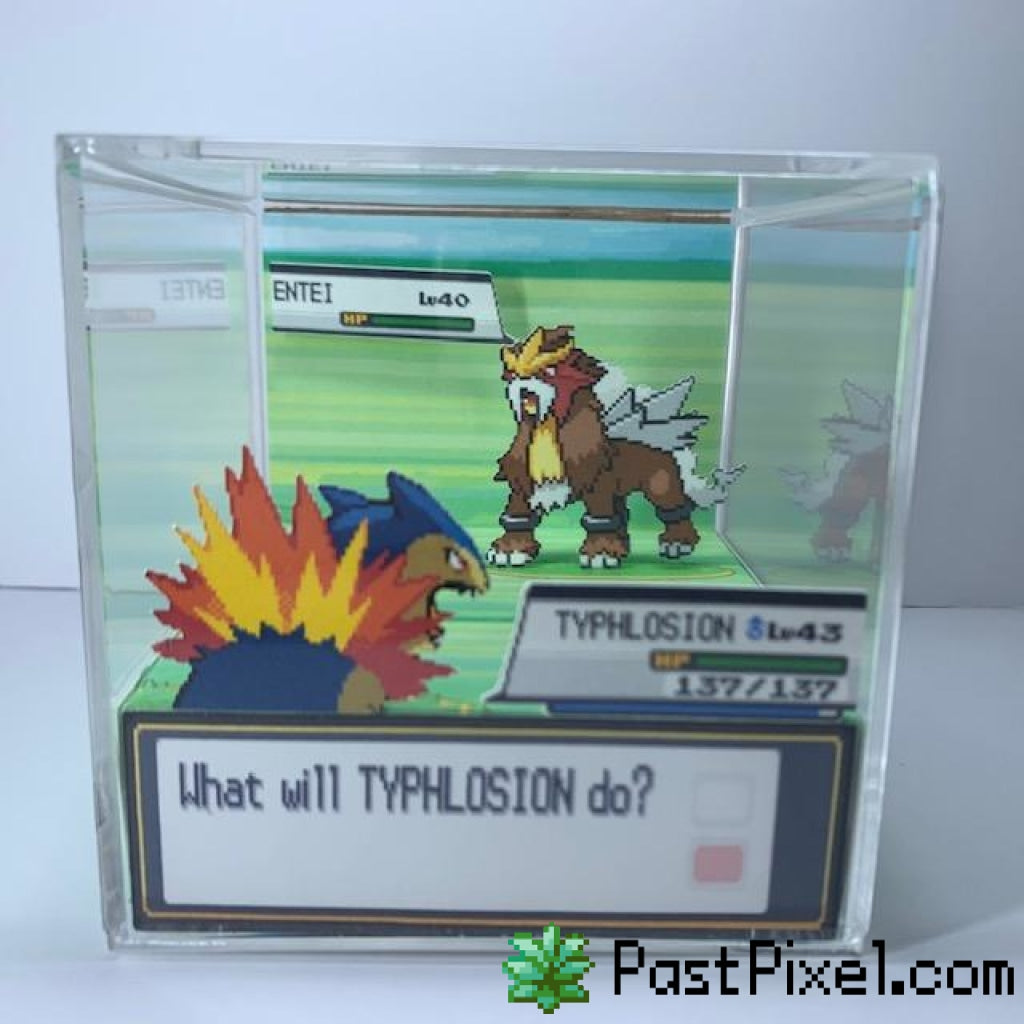 Pokemon Art Typhlosion vs Legendary Beasts Cube pastpixel