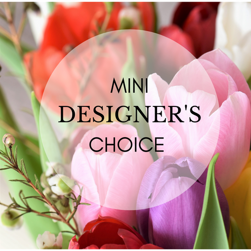 Mini Designer's Choice