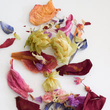 Load image into Gallery viewer, Dried Hops and Flower Confetti 10 pack