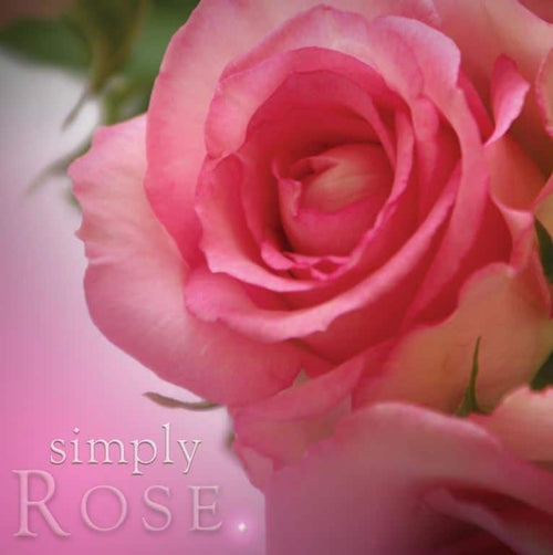 Simply pillar candle rose