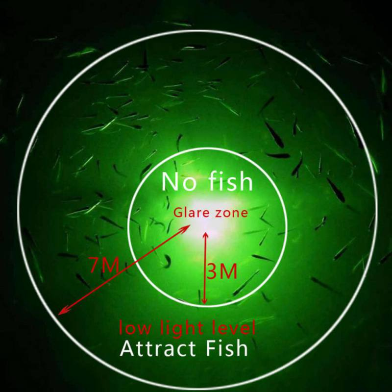 iFishDaily - LED Fish Attractor