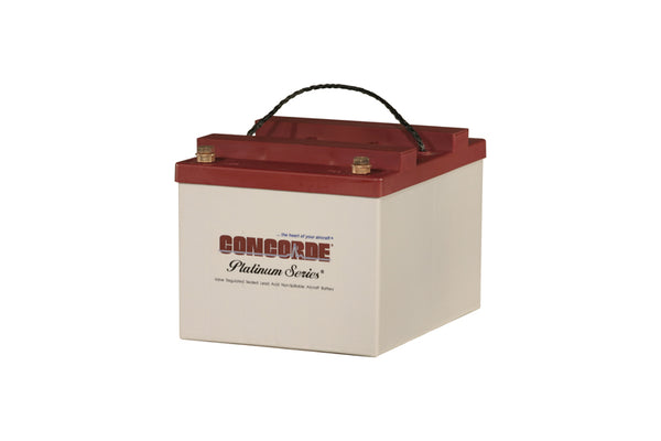 RG24-20 Concorde Sealed Lead Acid Battery
