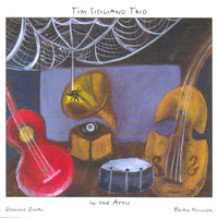 Tim Siciliano Trio - In the Attic - CIMP 381