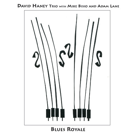 David Haney Trio with Mike Bisio and Adam Lane - Blues Royale - CIMP 354