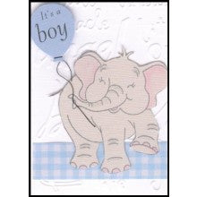 Little Bits Baby Boy Elephant Gift Card