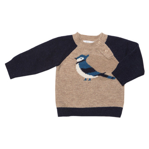 Bebe Tate Raglan Bluejay Jumper - RedHill Childrenswear