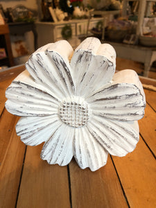 Medium Whitewashed Daisy