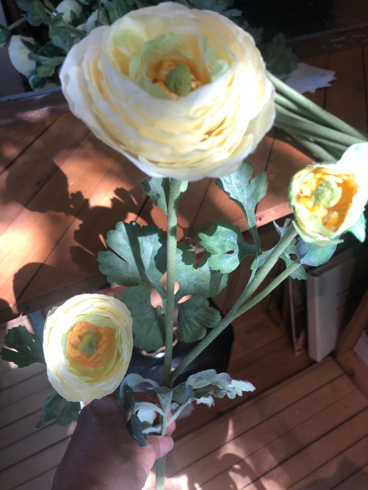28 inch Cream Ranunculus Stem