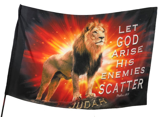 Let God Arise Worship Flag
