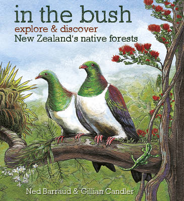 In the Bush - Explore & Discover the New Zealand's Native Forests