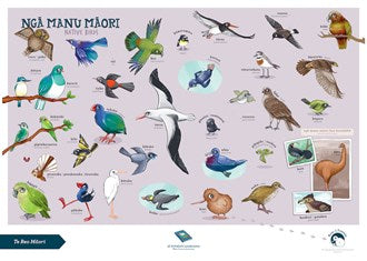 Native Birds A3 Poster